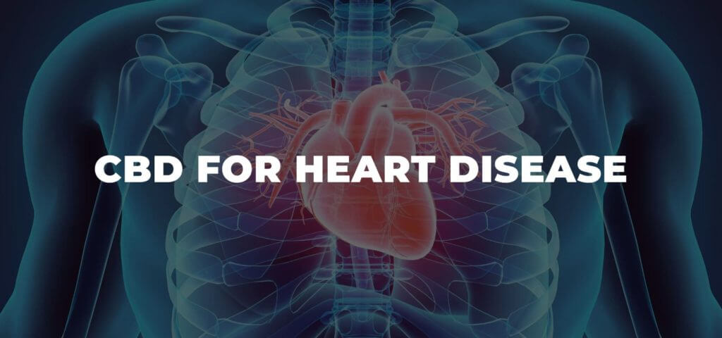 How CBD Can Be Helpful for Heart Diseases