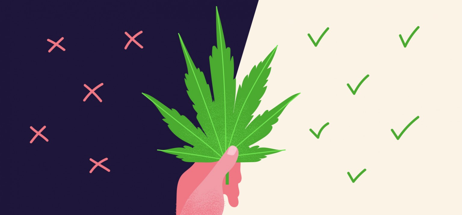 Can CBD Alleviate THC Induced Panic Attacks