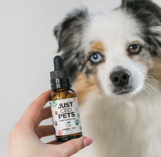 Highland Pharms PAWS+ CBD for Pets