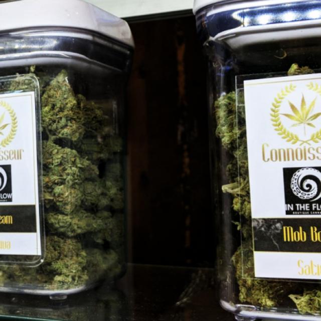 Rocky Mountain Cannabis Corporation